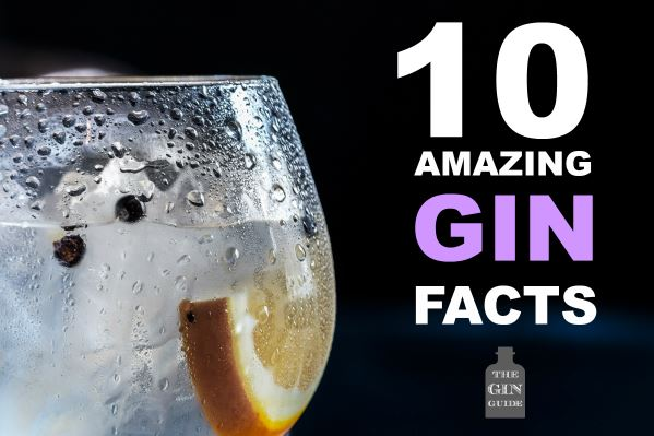 10 Amazing Gin Facts To Impress Your Friends The Gin Guide