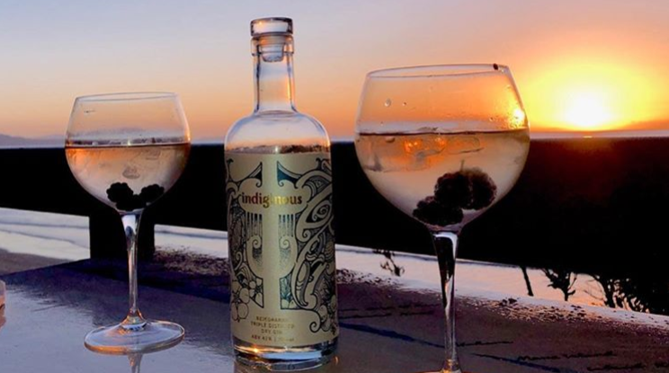 New Zealand Gin World Of Gin Industry Update The Gin